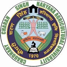 chaudhary Charan Singh Haryana Agriculture University Recruitment 2013
