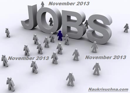 Latest Vacancies in India in November 2013 After Diwali